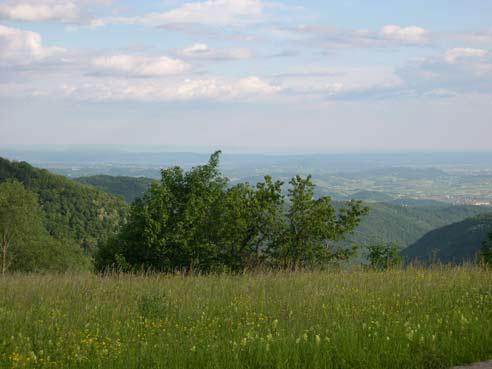 valle1